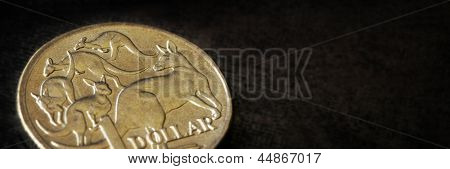Australian dollar coin in close-up over dark slate background.  Panorama crop.