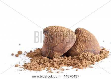 Chocolate Truffles On Cocoa Powder