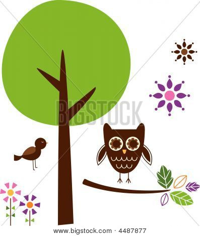 Owl bird branch tree