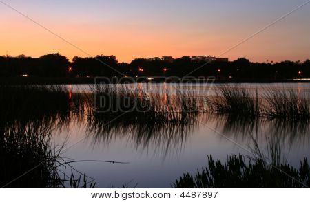 Lake Parker