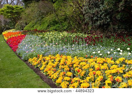 A Variety Of Bright Colourful Spring Flowers Blloming In St James Park
