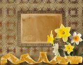 image of narcissi  - Vintage postcard for invitation with bunch of yellow narcissi - JPG