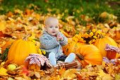 stock photo of happy halloween  - Cute baby boy with pumpkins in autumn garden - JPG