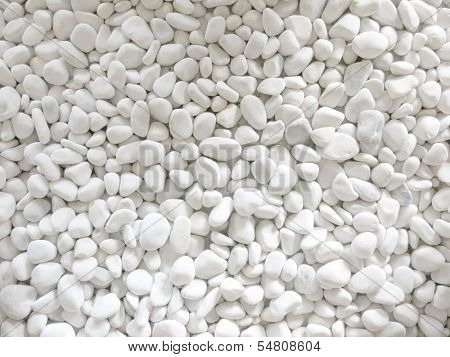 Bed of plain white gravel