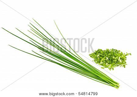 Bunch Chives