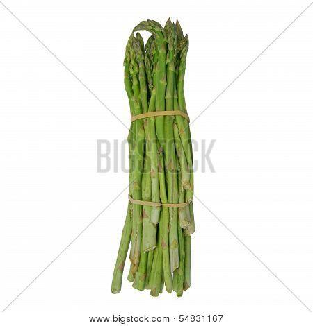 Asparagus Isolated