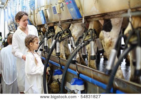 Mother and little daughter in white coats look at milking of cows in farm.