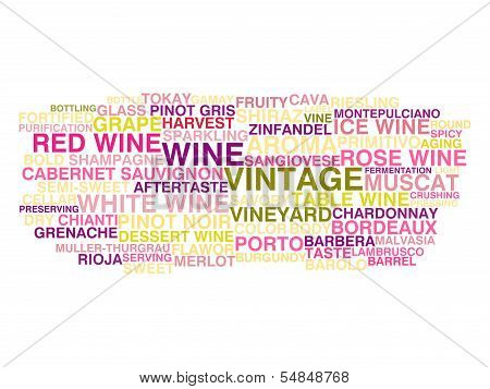 Types Of Wine. Word Cloud Concept