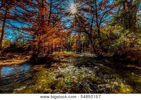 Sunburst of Beautiful Fall Foliage On The Guadalupe River, Texas.