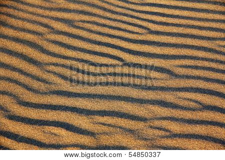 Ripples On A Sand Dune