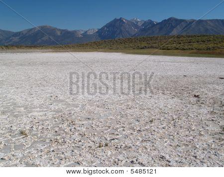 Salz plain