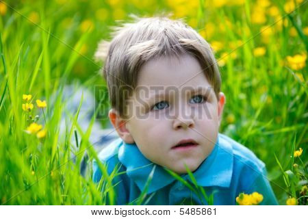 Small Boy In Meadow