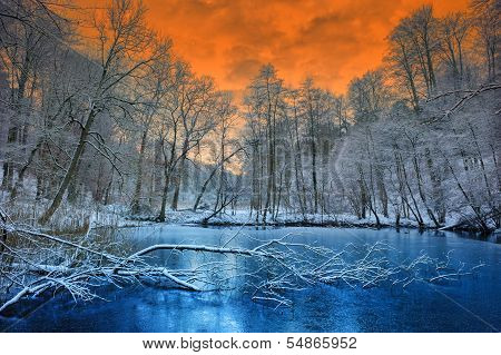Spectacular Orange Sunset Over Winter Forest poster