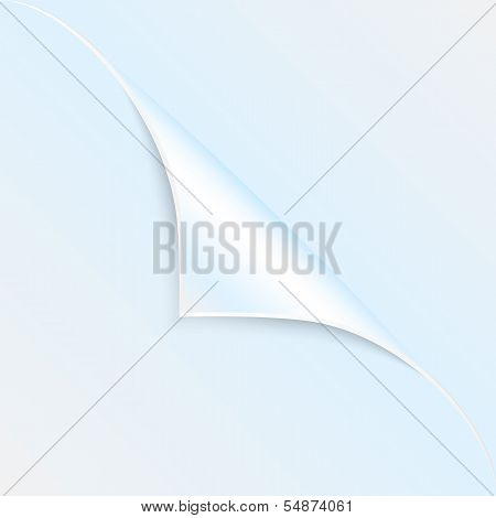 Blank Sheet Of Paper With The Curved Corner.clean Sheet For Posting Information.vector