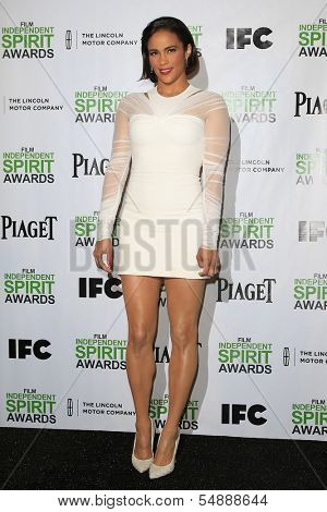 LOS ANGELES - NOV 26: Paula Patton at the 2014 Film Independent Spirit Awards Nominations Press Conference at W Hollywood on November 26, 2013 in Los Angeles, CA