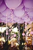 picture of wedding feast  - Pink balloons under the ceiling on the wedding party [[** Note: Shallow depth of field ** Note: Visible grain at 100%, best at smaller sizes - JPG