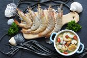 picture of tiger prawn  - Shrimp - JPG