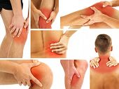 picture of knee  - Collage representing man having pain at several part of body - JPG