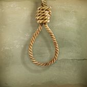 picture of hangmans noose  - Hangman knot old style vector - JPG
