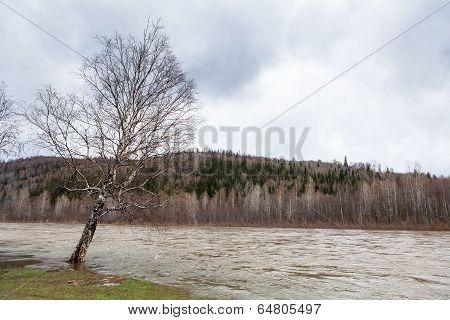 Ural Nature On The River Lemeza, Russia