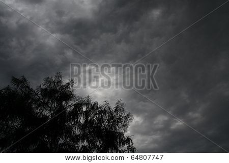 Dark Menacing Clouds Of Approaching Storm And Tree