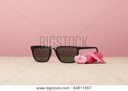 Brown Sunglasses On Canvas