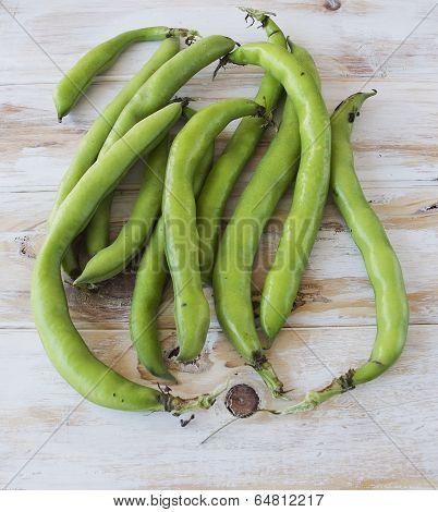 Seedcases Lima Beans.