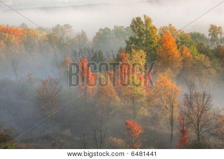 Autumn Kalamazoo River Valley