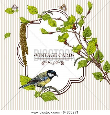 Vintage Card with Birch Twigs and Bird Tit