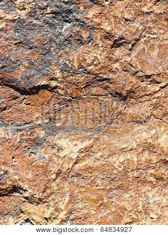 Macro Rock Texture