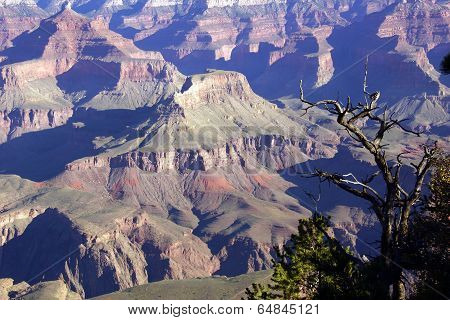 Early Morning Light On Eroded Ridges Above The Colorado River