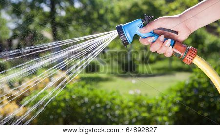 Woman's  hand with hose sprinkle watering plants in the garden