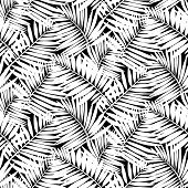 image of tree leaves  - Vector seamless pattern with leafs inspired by tropical nature and plants like palm trees and ferns in black and white colors - JPG