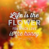 picture of daisy flower  - Quote Typographical Background - JPG
