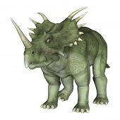 stock photo of herbivorous  - 3D digital render of a dinosaur Styracosaurus or spiked lizard a genus of herbivorous ceratopsian dinosaur from the Cretaceous Period  - JPG