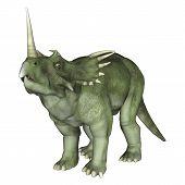stock photo of herbivores  - 3D digital render of a dinosaur Styracosaurus or spiked lizard a genus of herbivorous ceratopsian dinosaur from the Cretaceous Period  - JPG