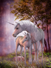 picture of fillies  - A white unicorn doe and fawn spend their peaceful time together in the magical forest - JPG