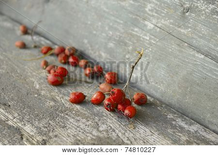 Desiccated Orange Berries On Wooden Table