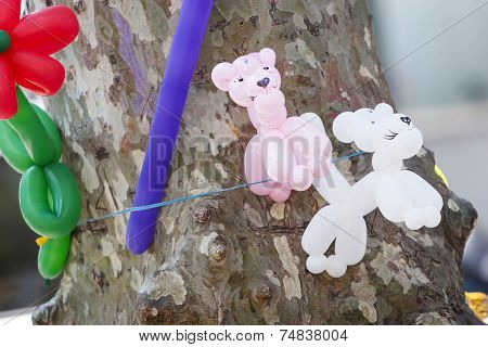 Balloons Attached To Tree Trunk