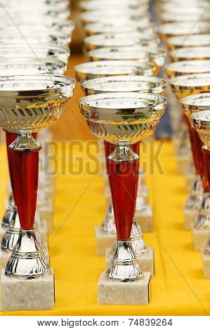 Silver Champion Trophies