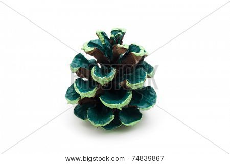 dyed pine cone