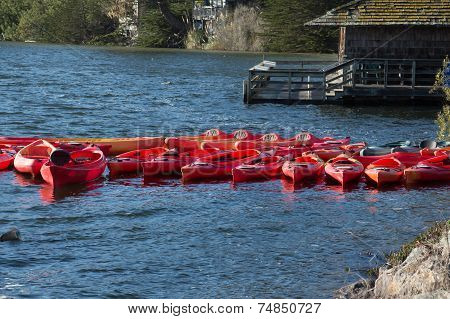 Kayaks Moored At The Water's Edge