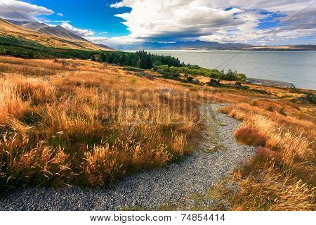 Landscapes Viewed Of Lake Tekapo From Viewpoint