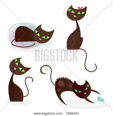Brown cat series in various poses 2