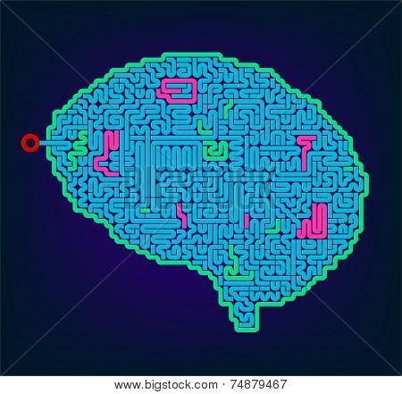 Intelligence puzzle