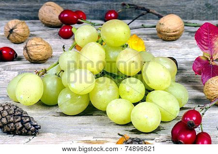 Grapes And Walnuts