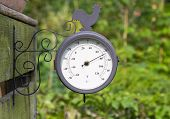 picture of barometer  - Barometer in a garden or allotment with green foliage background - JPG