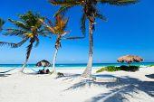 image of caribbean  - Perfect Caribbean beach in Tulum Mexico - JPG