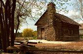 Historic Log Home poster