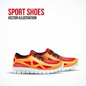 pic of insole  - Running colorful pair shoes - JPG